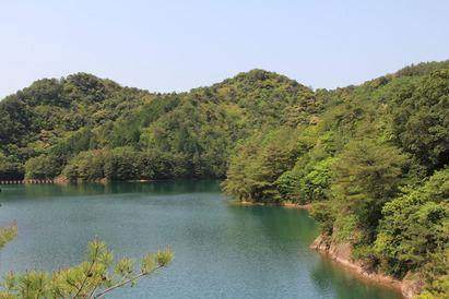 新緑の季節(2012年5月12日)